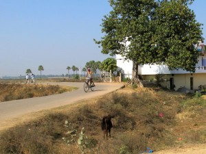 Biking through the village